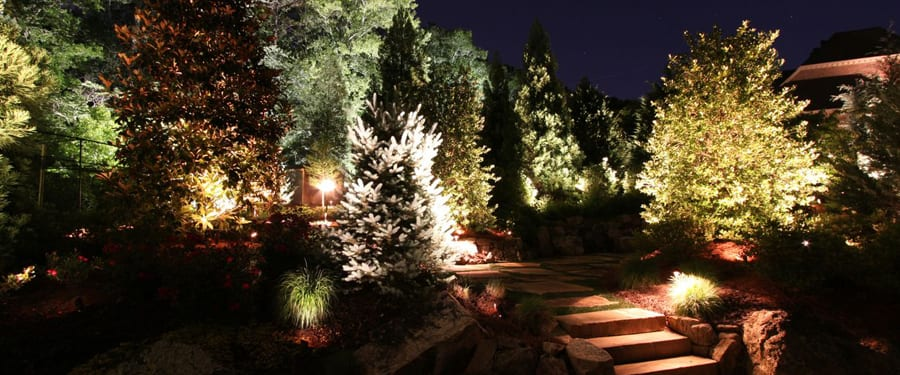 Outdoor tree lighting tips for enhancing your yard workwithnaturefo