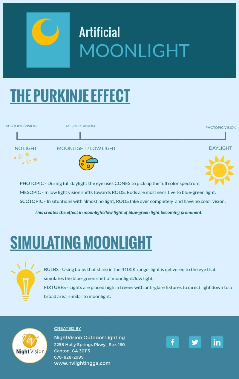 Artificial Moonlight What It Is and How to Use It [infographic]
